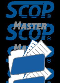 ScopMaster